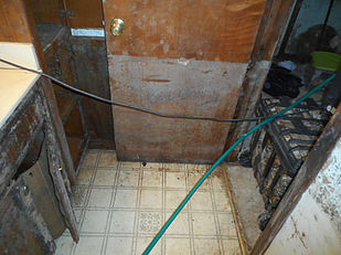 Mold Growth-Wood and Moisture